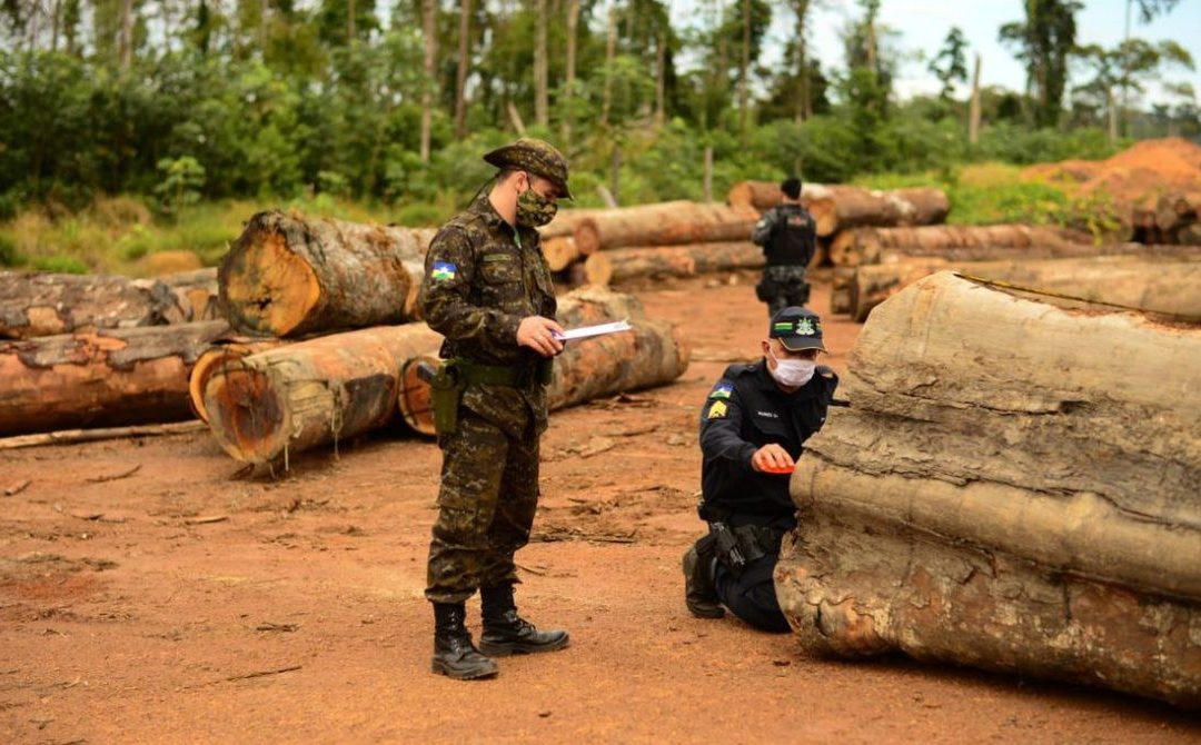 DEFESA: Operação Verde Brasil 2 evidencia a importância do combate aos crimes ambientais