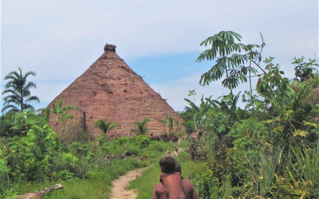 AMAZÔNIA NOTÍCIA E INFORMAÇÃO: 'Fui obrigado a entrar em terra indígena com um missionário', diz servidor da Funai