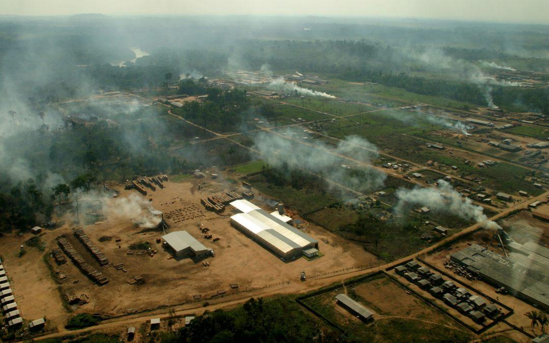 AMAZÔNIA REAL: O Desmatamento da Amazônia Brasileira: 8 – Lavagem de dinheiro, exploração madeireira e mineração