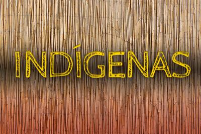 MPF: Tribunal mantém suspensão de norma da Funai que afrouxa proteção de terras indígenas em Roraima
