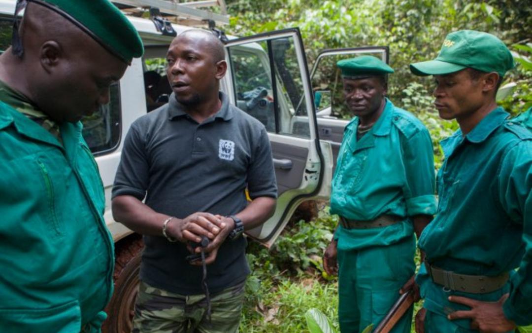 SURVIVAL: WWF Internacional lança relatório sobre abusos de direitos humanos