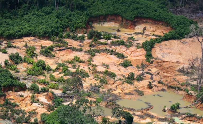 AMAZÔNIA NOTÍCIA E INFORMAÇÃO: Relatório aponta abandono dos Yanomami pelas autoridades durante a pandemia