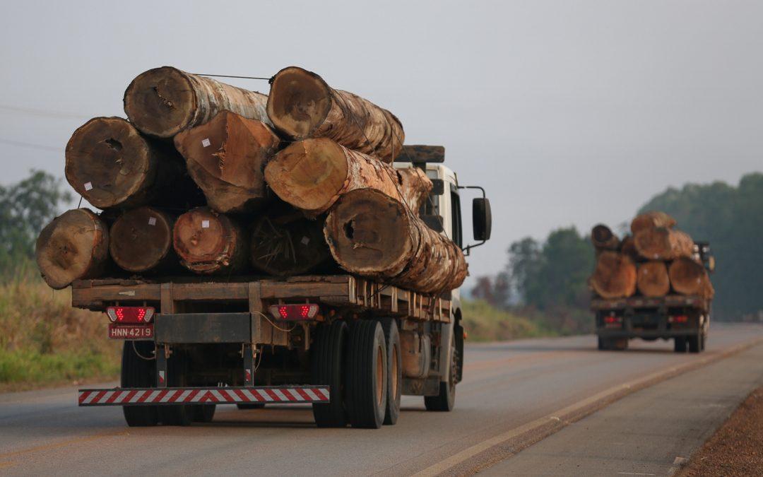 AMAZÔNIA REAL: O Desmatamento da Amazônia Brasileira: 9 – Estradas