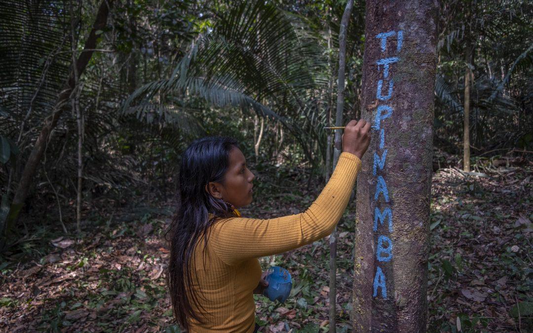 AMAZÔNIA REAL: Autodemarcação Tupinambá reivindica reconhecimento do território no Pará