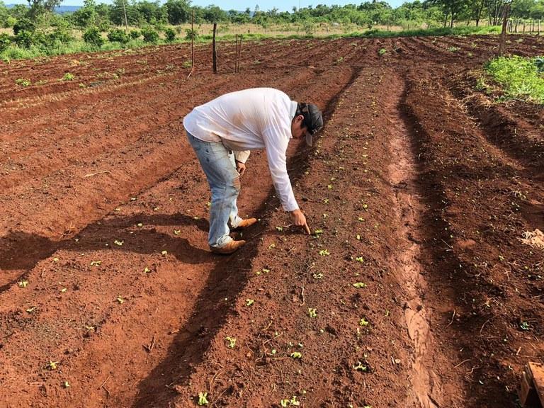 FUNAI: Funai promove visitas técnicas para aprimorar atividades produtivas em aldeias do Mato Grosso do Sul