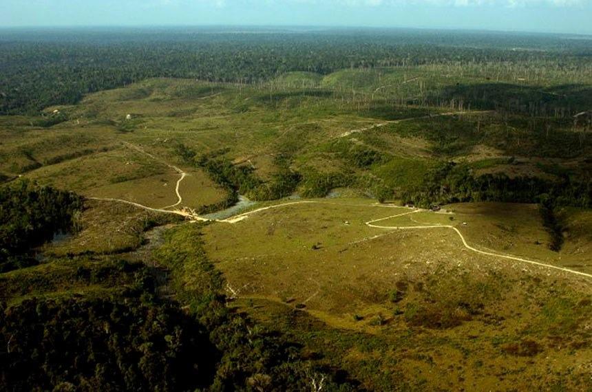SENADO: Preservação da Amazônia esteve em debate no Senado em 2020