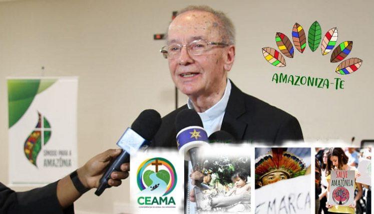CNBB: COMO FOI O ANO DE 2020 DA COMISSÃO EPISCOPAL PARA A AMAZÔNIA