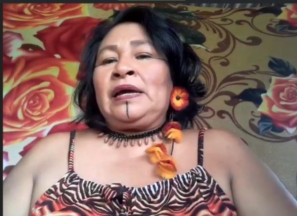 IEB: Primeira assembleia virtual das mulheres indígenas da Amazônia brasileira