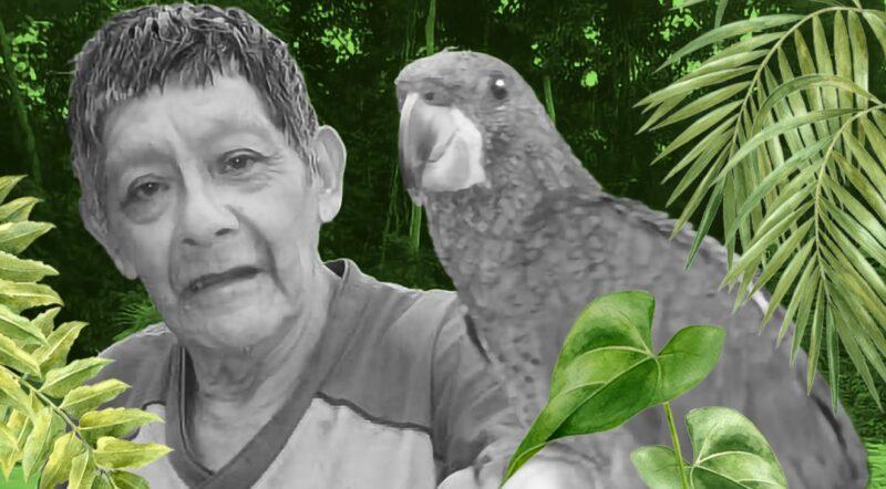 IEB: Nota de pesar- Aimom Aruká Juma