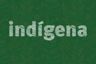 MPF: Florianópolis (SC) tem até quarta-feira para dar condições dignas de abrigo a indígenas no Tisac