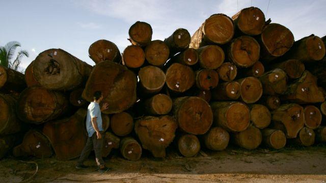 AMAZÔNIA NOTÍCIA E INFORMAÇÃO: MPF vai apurar venda ilegal de terras na Amazônia via Facebook revelada pela BBC