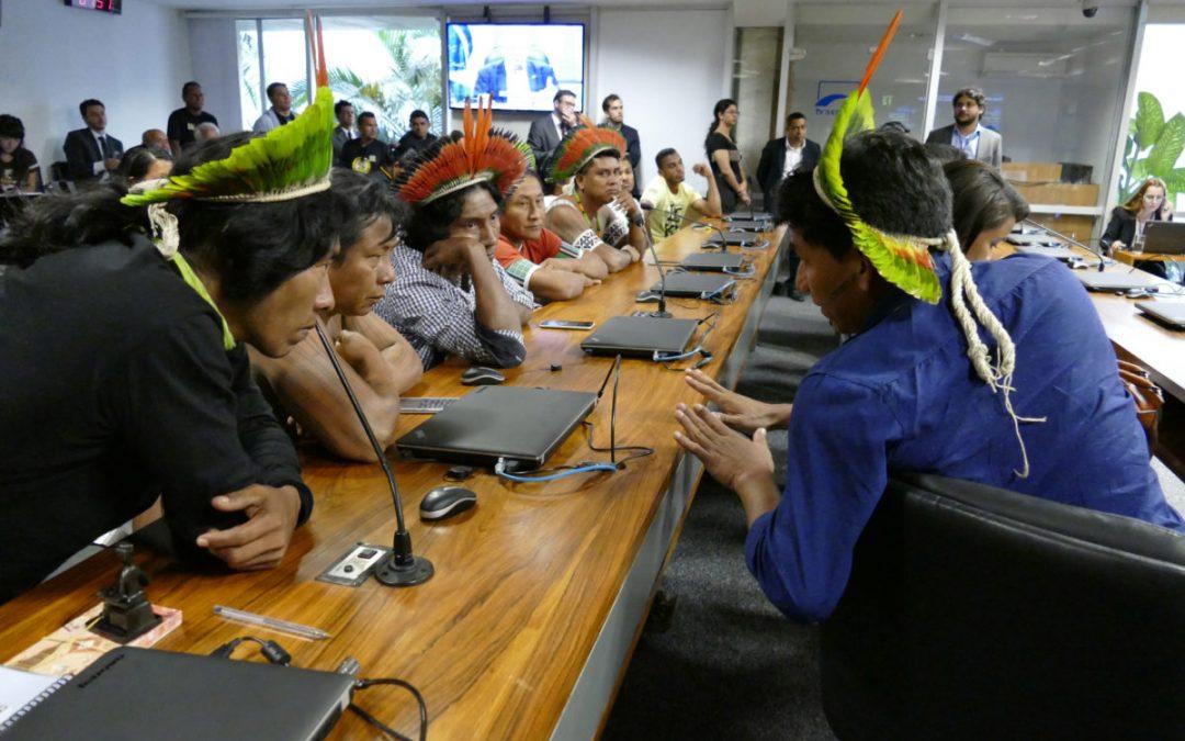 AMAZÔNIA NOTÍCIA E INFORMAÇÃO: Governo federal quer licenciar ferrovia sem consulta a indígenas