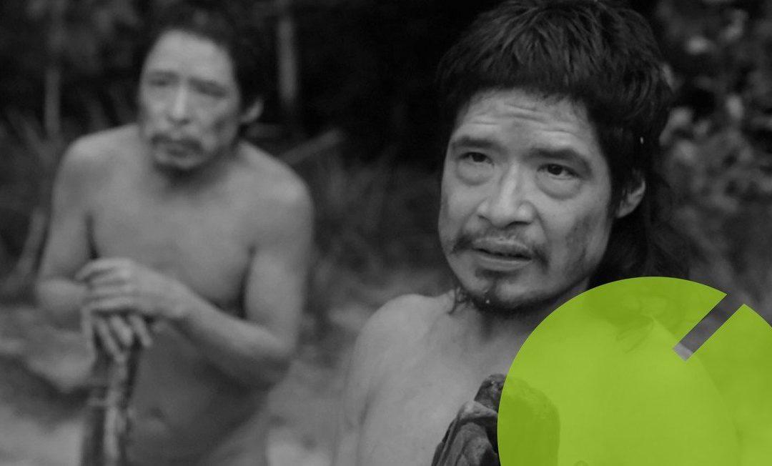 O GLOBO: Desmatamento avança sobre terra de índios isolados em Mato Grosso