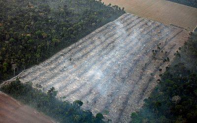 AMAZÔNIA REAL: O Desmatamento da Amazônia Brasileira: 20 – Áreas Protegidas