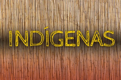 MPF: MPF ajuíza ação para que Funai destrave processo de demarcação de terra indígena em Pariconha (AL)