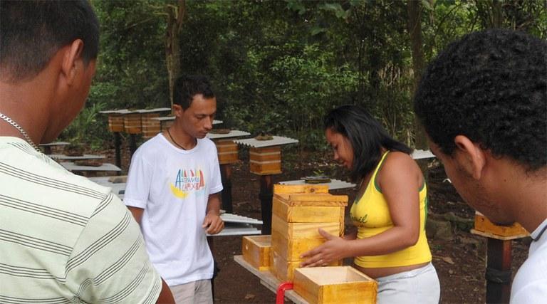 FUNAI: Cooperativa indígena do Espírito Santo alcança maior produção de mel desde sua fundação