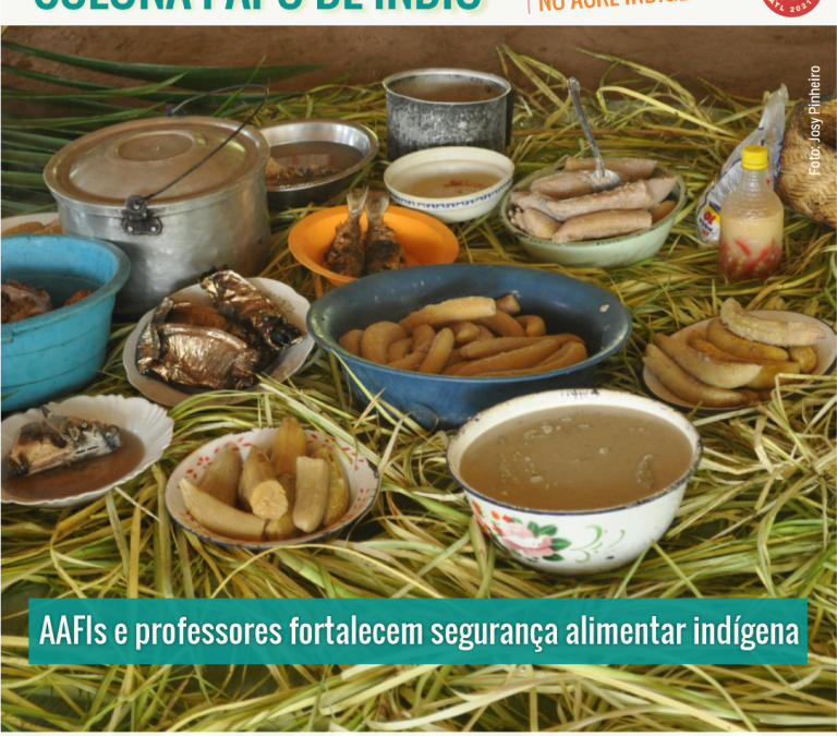CPI- ACRE: PAPO DE ÍNDIO: AAFIs e professores fortalecem segurança alimentar indígena