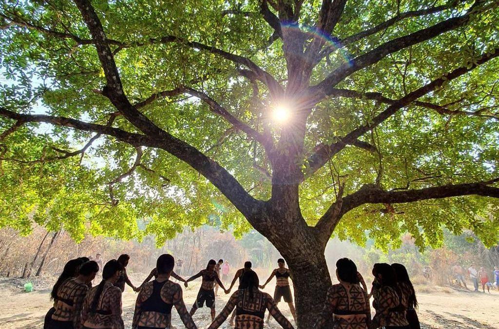 APIB: Nota de Repúdio da Associação Xavante Warã contra a política anti indigenista do Governo Federal