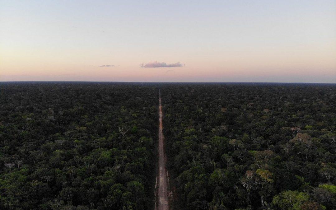 AMAZÔNIA REAL: Dnit e Ibama fazem audiências sobre a BR-319 mesmo com estudos incompletos