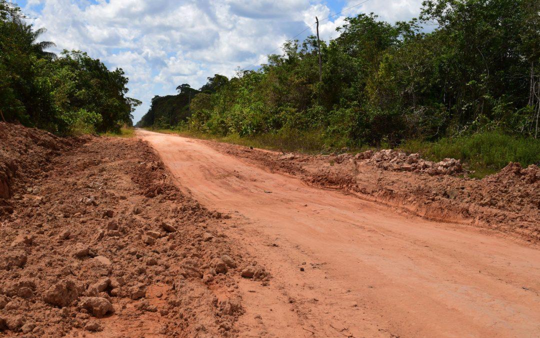 AMAZÔNIA REAL: Estradas na Amazônia: um mal?