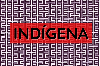 MPF: Indígenas devem ser consultados previamente sobre dispensa de estudos de impacto ambiental em Mato Grosso